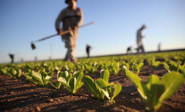 Farmworkers Deserve the Right to Choose