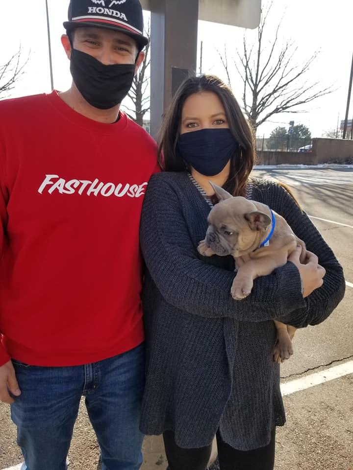 French Bulldog new puppy family