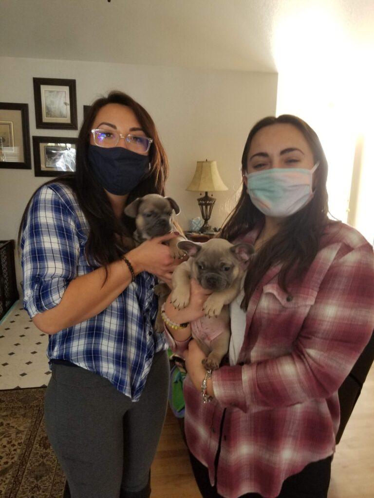 We got 2 Frenchie Puppies