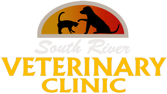 South River Veterinary Clinic
