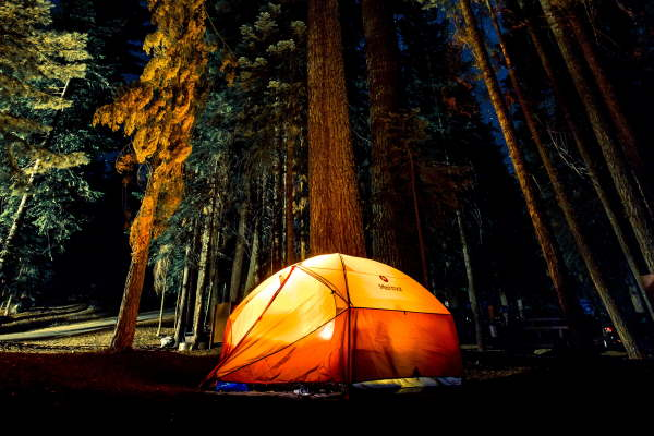 Tent lit from within among pines at night