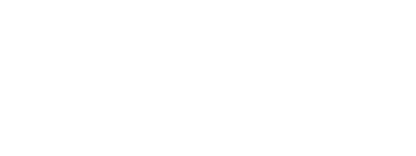 New Economy CPA