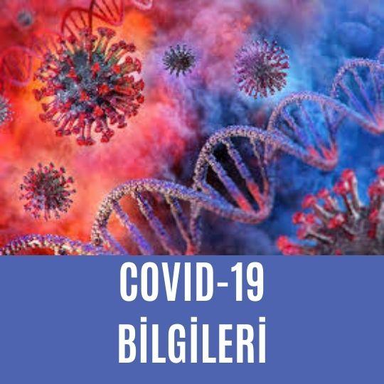 Covid-19 bilgileri