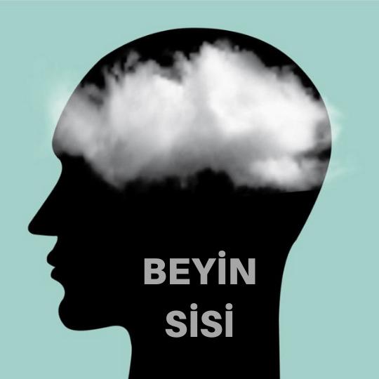 Beyin sisi