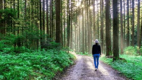 Orman banyosu yararlıdır