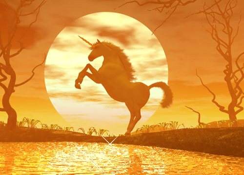 Unicorn Story and Poetry