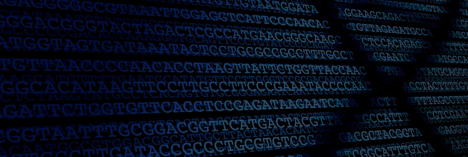About Rapid Genomics