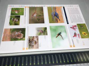 Up close look at page 2 at Grunwald Printing