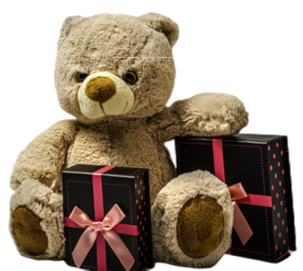 Bear with presents
