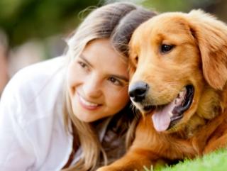 Animal Reiki and Communication Class Registration