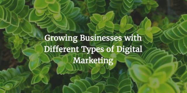Growing Businesses with Different Types of Digital Marketing