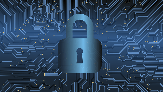 Cybersecurity Measures Every eCommerce Organization Should Prioritize