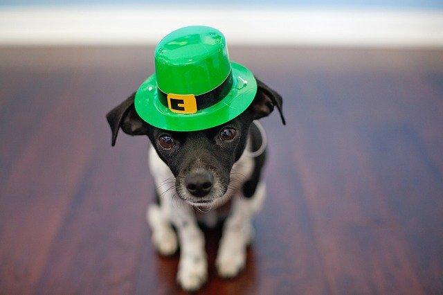 St. Patrick's Day Marketing