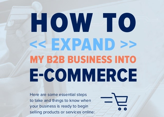 How to Expand My B2B Business into eCommerce