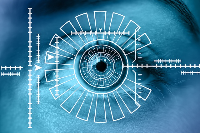 Biometric Identification for Identity Verifications