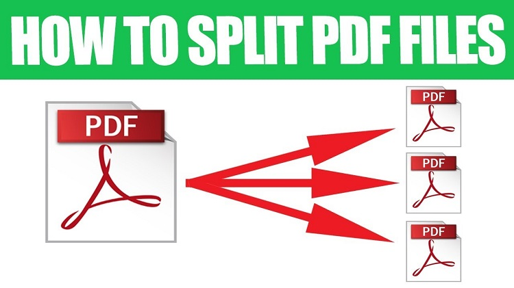 How To Split PDF Pages On PDFBear