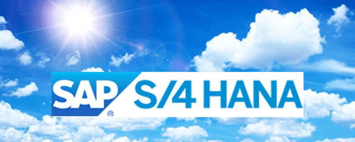 Installing an SAP S/4 HANA On-Premise System
