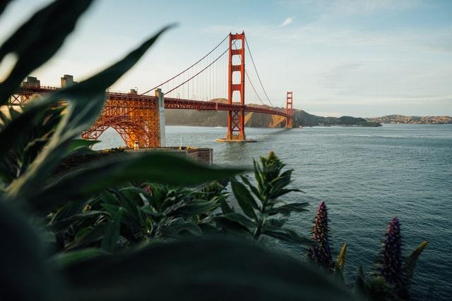 SEO San Francisco -Local SEO Packages