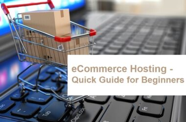 eCommerce Hosting - A Quick Guide For Beginner
