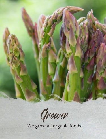 Grower: We grow all organic foods