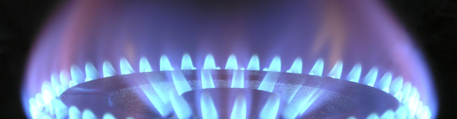 Plumber Gas Repair