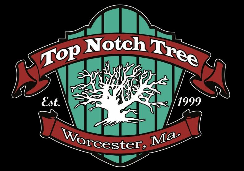 Top Notch (1)
