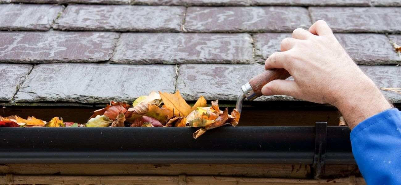 Gutter Cleaning in New Jersey