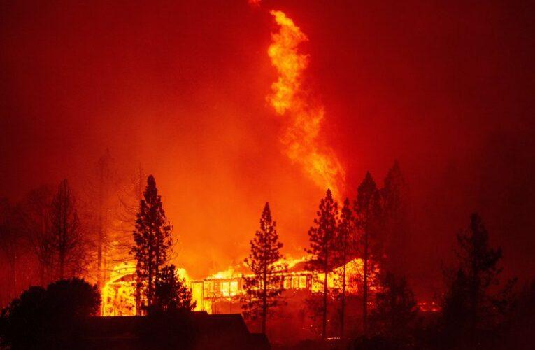 Incendios en California han arrasado con 800.000 hectáreas