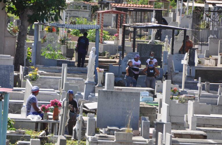 Hasta las fosas del cementerio son invadidas