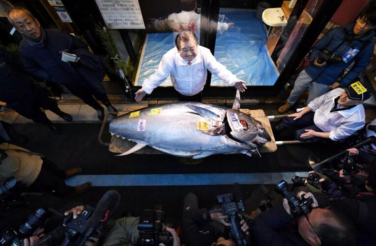 Subastan atún por $200 mil en Japón