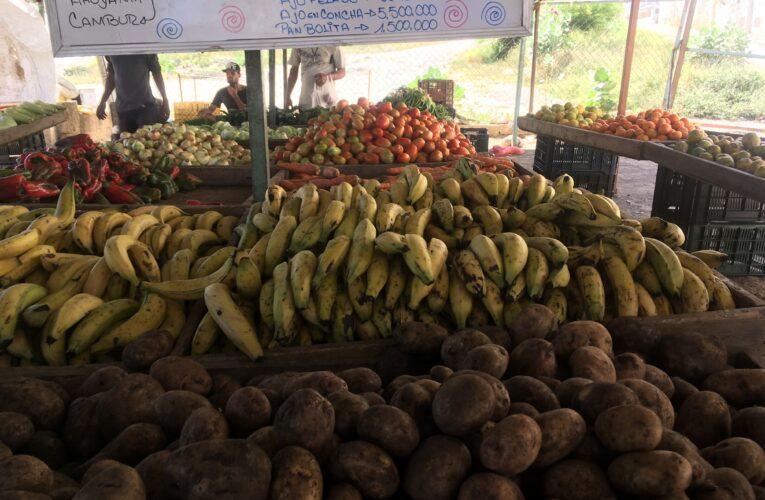 Por gramos y unidad compran hortalizas y verduras los guaireños