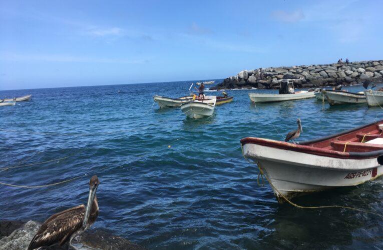 Pescadores de Macuto repararán 19 lanchas accidentadas