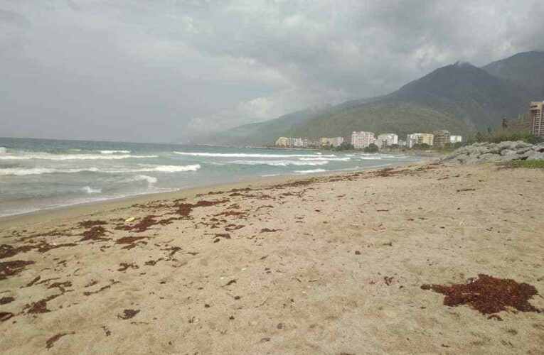 Reforzarán seguridad en las playas para evitar ahogados
