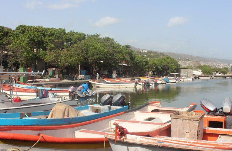 Desalojo a comerciantes de La Zorra fue «porque aumentaron precios»