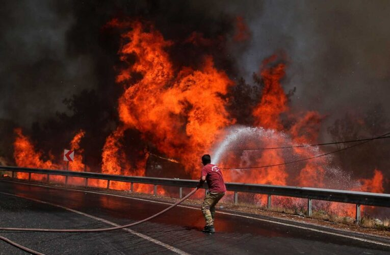 Incendios forestales dejan 8 muertos en Turquía