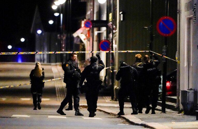 Danés convertido al islam mata con flechas a 4 mujeres y 1 hombre en Noruega
