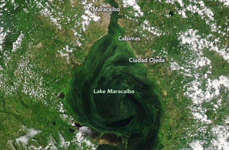 Fotos de la NASA evidencian grave contaminación en el lago de Maracaibo