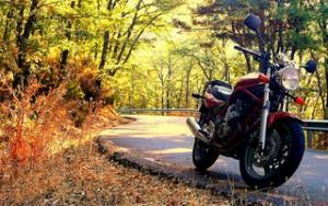 Autumn Motorcycle Riding