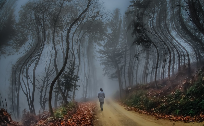 path into the unknown