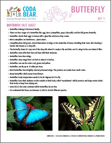 8-KIT-1_Butterfly_Fact_Sheet_4