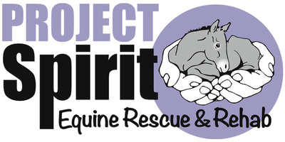 projectspirit.org