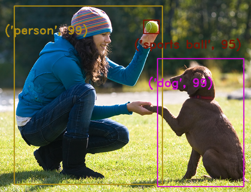object detection and tracking opencv