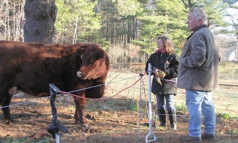 Billie Best got her first cows in 2005.