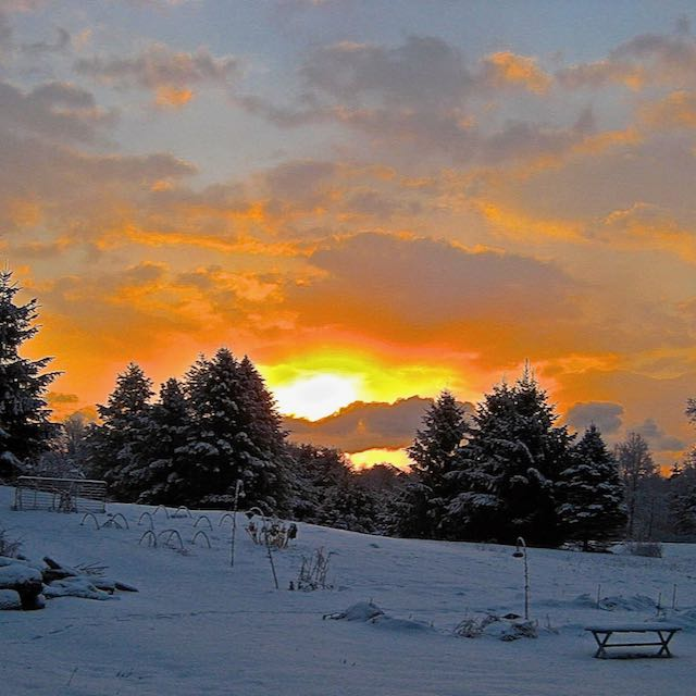 Writer Billie Best celebrates the Winter Solstice