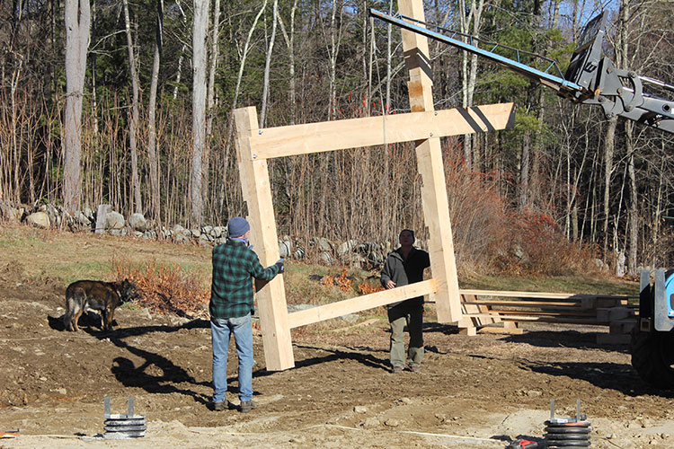 Lifting preassembled bent with tractor, to place on the building foundation.