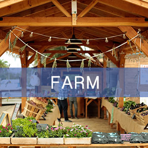 Beautiful and climate-sturdy farm stand with solar installation to power lights and refrigeration.