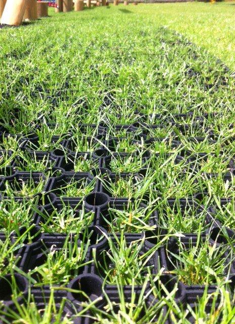 grass-through-mat