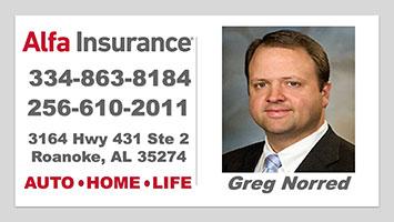alfa-insurance
