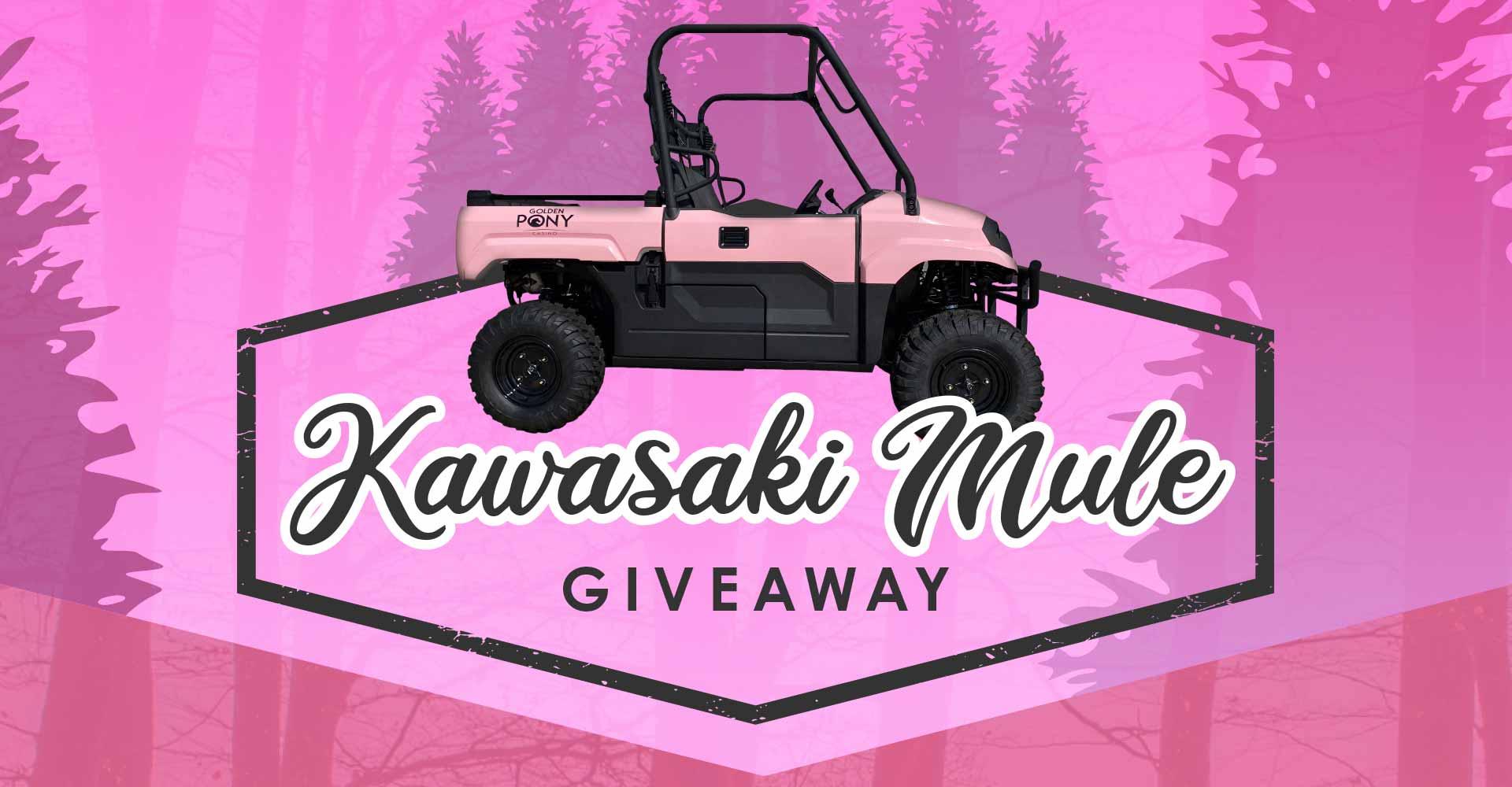 Pink Kawasaki Mule Giveaway