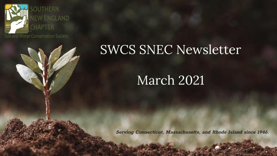 March 2021 SNEC Newsletter